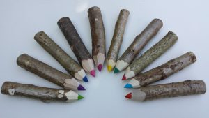 cottage-coppicing-crayons